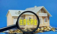自由职业、个体工商户可以交住房公积金吗