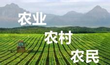 新三农指的是什么 三农是指的哪三农【详解】